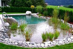 Instructions on how to build a natural pool DIY, natural swimming pool types, including eco-friendly construction.