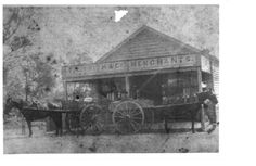 T C Frith and Co. Newcastle Town, Tourist Info, Old Maps, Central Coast, Local History, Old Pictures, Sydney, Community, Store