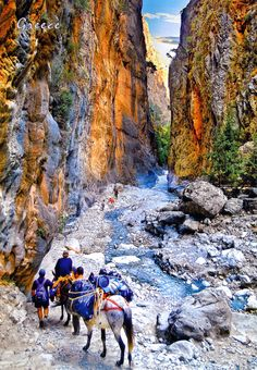 The Samariá Gorge is a National Park of Greece on the island of Crete - a major tourist attraction of the island - and a World's Biosphere Reserve.  The gorge is in southwest Crete in the regional unit of Chania. It was created by a small river running between the White Mountains and Mt. Volakias