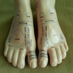 Foot Reflex Areas, on the dorsal view of both feet. Begin Your healing process with reflexology. Foot Reflexology, Good To Know, Breast, Healing, Fit, Projects, Colour, Log Projects, Blue Prints