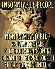 Stanchezza frasi divertenti vignette cartelli for Vignette buongiorno simpatiche