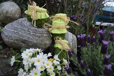 Fairy, Plants, Easter Activities, Recipes, Planters, Fairies, Plant, Planting, Angels