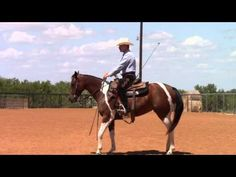 Teaching a Horse to Canter Depart - YouTube