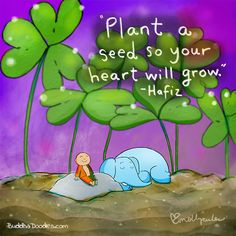 Plant a Seed so Your Heart will Grow – BuddhaDoodles Seed Quotes, Art Quotes, Hafiz Quotes, Qoutes, Life Quotes, Tiny Buddha, Little Buddha, Buddha Thoughts, Happy Thoughts