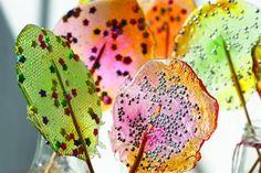 Lollypops o paletas