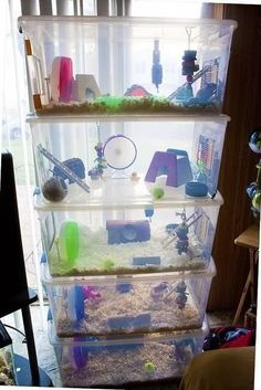 Easy to clean bin set-up for hamsters or mice. image text: if you look closely there is only ONE syrian hamster in there. Habitat Du Hamster, Hamster Bin Cage, Diy Hamster Toys, Diy Guinea Pig Cage, Hamster Life, Ferret Cage, Rat Toys, Syrian Hamster, Pets