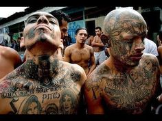 Welcome to the NEW America.....Mex Gang Members released throughout the US! MS-13 Gang Members Released at Border