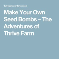 Make Your Own Seed Bombs – The Adventures of Thrive Farm