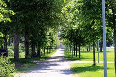 Summer in Finland! <3