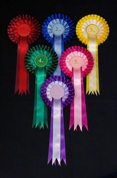 Duetto Three Tier Show Rosettes by Hallett's Rosettes Rosettes, Ribbons, Quilts, Bias Tape, Quilt Sets, Log Cabin Quilts, Quilting, Quilt, Afghans