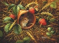 . Strawberry Mouse, Art Gallery, Lady Bugs, Fine Art, Windsor, Art Work, Painting, Illustrations, Live