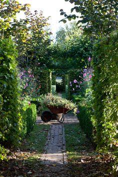 ZsaZsa Bellagio – Like No Other: garden