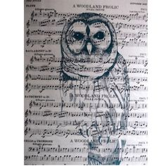 WANT! Owl Screenprint on Music Paper by northtrain on Etsy