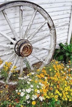 Old Wagon Wheel, Cute Idea For Garden