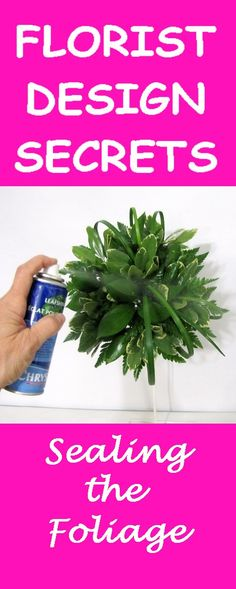 Make a Bridal Bouquet - Spraying Greenery with Leaf Polish  Learn how to make bridal bouquets, corsages, boutonnieres, reception table centerpieces and church decorations.  Buy wholesale fresh flowers and discount florist supplies.