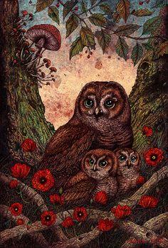 Tawny Owls 11x17 Print van angelarizza op Etsy