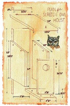 Audubon: Backyard build a screech owl nesting box Bird House Plans, Bird House Kits, Owl House, Owl Nest Box, Owl Box, Bird House Feeder, Bird Feeders, Screech Owl, Bird Houses Diy