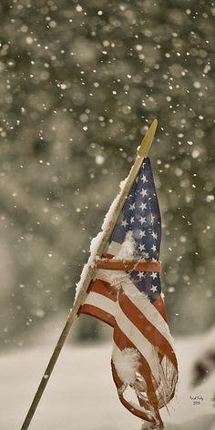 Flag Photograph - Snowy American by Trish Tritz American Spirit, American Pride, American History, American Quotes, American Symbols, American Women, American Indians, American Art, Native American