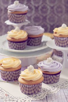 Sweet-and-Simple-Cupcakes. Made these and they were awesome. Changed the icing recipe slightly to make less of it, and added more lemon. Yum!