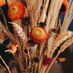 Я сделала этот букет из сухоцветов, и теперь у меня есть немного лета в эти хмурые осенние дни. 🍁I have a little bit of summer in these cloudy autumn days - a bouquet of dried flowers. #vscocam #vsco #vscorussia #nature #flowers #bouquet #autumn #fall #livefolk #livegreen #livethelittlethings #liveautentic