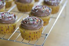 Pumpkin Cupcakes with Chocolate Cream Cheese Frosting