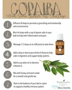 Young Living is the World Leader in Essential Oils. We offer therapeutic-grade oils for your natural lifestyle. Authentic essential oils for every household. Copaiba Essential Oil, Essential Oils For Pain, Natural Essential Oils, Young Living Essential Oils, Essential Oil Diffuser, Essential Oil Blends, Copaiba Oil Uses, Natural Oils, Natural Health