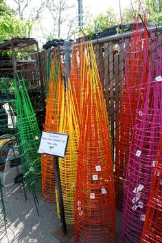 These ought to brighten a raised vegetable garden next to the beach.