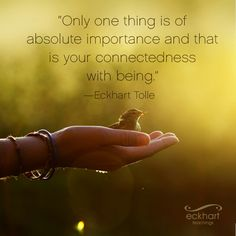 """Only one thing is of absolute importance and that is your connectedness with being."" ~Eckhart Tolle Please Feel Free To Repin & Share This Week's Present Moment Reminder: To receive automatic reminders from Eckhart via email, click here: https://www.bit.ly/1oMjT9b"