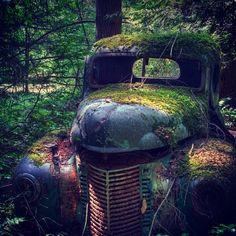 Love the old truck!