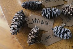 Pine Cone Place Names Natural Wilderness Woods Wedding http://photosby.si/