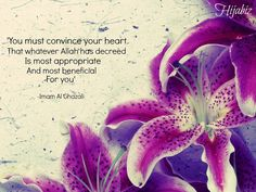 Whatever Allah has decreed for you is the BEST for you!