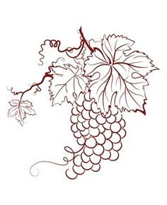 1000+ images about Wine, etc. on Pinterest | Wine, Wine Tasting Party and Red Wines