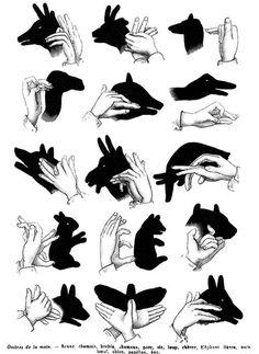 sombra com a mão
