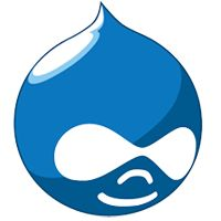 When hiring a Drupal site developer it is very important to know what you need and where you can find the service. Lets Nurture gives options to Hire #Drupaldevelopers & #Experts. Lets Nurture's highly expert Drupal web developer team provides best solutions for Drupal website development services for your business.