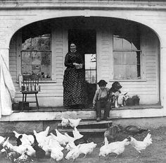Vintage Photo of a Young Lad Sitting on the Front Steps & Feeding the Chickens As His Mother Looks On