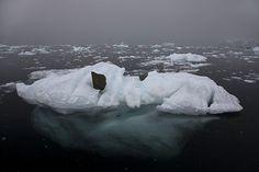 iceberg rock - Поиск в Google