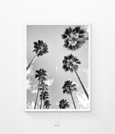 Black and White Photography Palm Tree Print Printable by TaiPrints