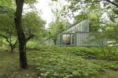 Sustainable Architecture in Japan - a greenhouse for a house!