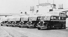 SAA buses in front of Rand Airport building 1938