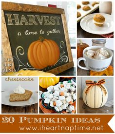20 Things to Do with Pumpkins #fall
