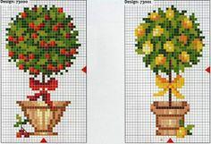 Bäume - Kirsche + Zitrone