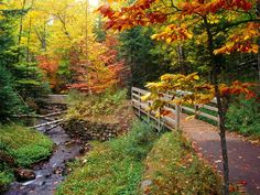 I want to take a walk here now!!