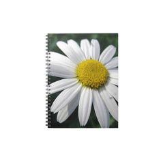 www.zazzle.com/fotosbykarin : Bloom center white daisy notebooks