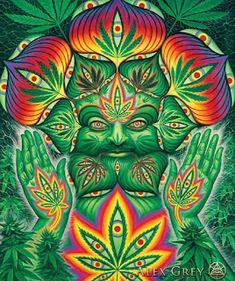 wallpaper 4k Alex Gray Art, Grey Art, Alex Grey Paintings, Art Paintings, Painting Art, Cannabis, Psychadelic Art, Stoner Art, Hippie Art