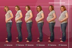Muitas grávidas ficam um pouco confusas com o cálculo das semanas, Durante as primeiras ecografias as datas podem ser variar. O cálculo da idade gestaciona