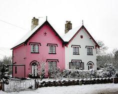 rosa och vita tvillinghus