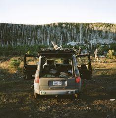 Honda Element AWD set for camping