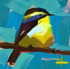 Narcissus Flycatcher Painting   angela moulton's painting a day