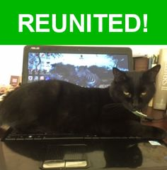 Great news! Happy to report that Belle has been reunited and is now home safe and sound! :)