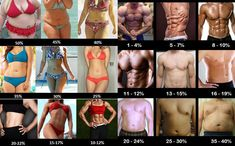 Knowing your body fat percentage is important for your weight loss journey. Learn how to measure your body fat and how it impacts your weight loss. Lose Weight In A Week, Losing Weight Tips, Ways To Lose Weight, Weight Loss Transformation, Weight Loss Journey, Body Fat Percentage Chart, Muscle Separation, Body Fat Measurement, Skinny Fat